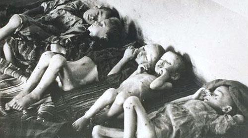 jasenovac_3_500x
