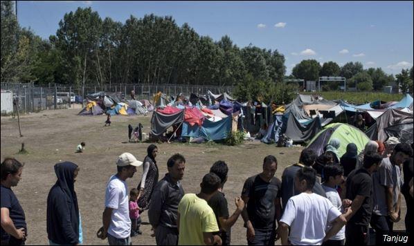 Избеглице не желе да остану у Србији (Фото: Архива)