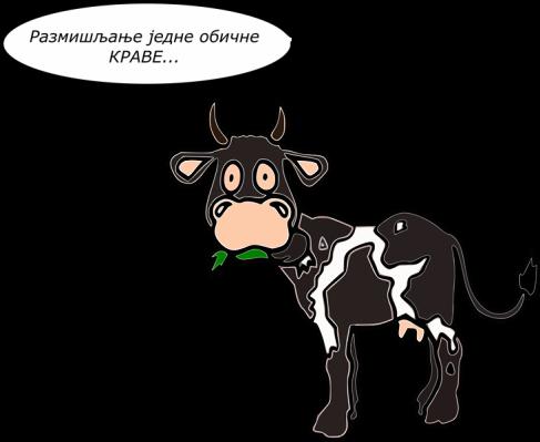 kravica1