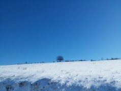 kolubarski mars vetar i sneg (8)