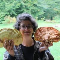 """ПРИЧЕ СА ДУШОМ: Откако је НАПУСТИЛА ГРАД да би живела крај извора и печурака, сви јој постављају исто питање """"Која је ово гљива?"""""""